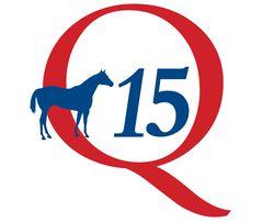 Q15-logo